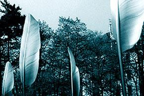 Regierungspraesidium Dresden<br/> Skulptur: Federn, im Duktus des Schreibens