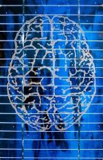 Das eingravierte Gehirn übernimmt symbolisch die Emitterschicht. Hier entstehen in einer Solarzelle die elektrischen Ladungaträger durch die Photoneneinwirkung. An dieser Schnittstelle entstehen aber auch neue Ideen zur Verbesserung der Technik.<br/>Makrofoto: Solarzelle