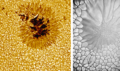 Bildnachweis: Bild links: Sonnenflecken: http://wwwex.physik.uni-ulm.de/lehre/kta-2018-2019/KTA-2018-2019se47.html